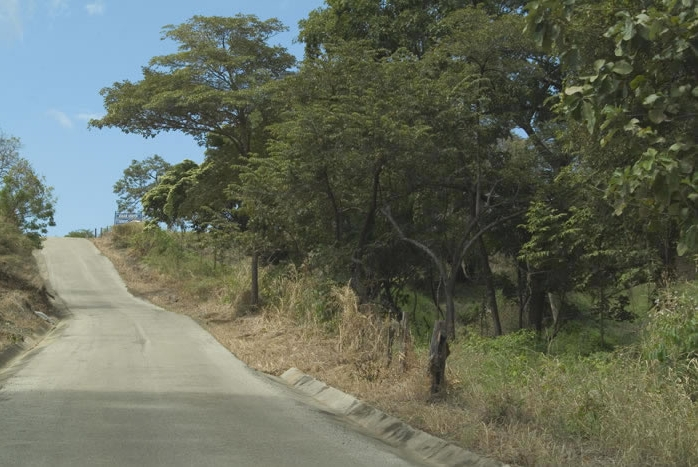 Commercial properties. View of paved road and lush trees.